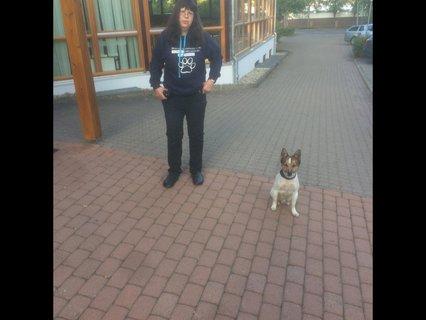 Annette Bourdon mit Hund Uwe vor dem Jugendgästehaus morgens um 7.00 Uhr