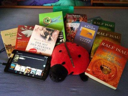 Lucy Lesekäfer umgeben von vielen Büchern und dem Tablet