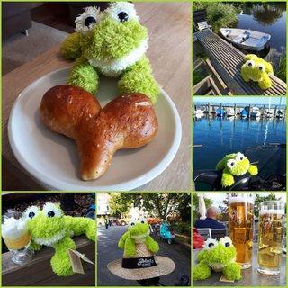 Froschi auf seinen verschiedenen Reisen