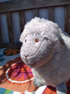Das Schaf Miss Woelki