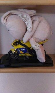 Der Hase Rasender Rossi auf einem kleinen Motorrad